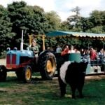 Tractor & Trailer Ride at Odds Farm