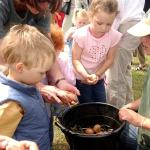 Egg Collecting At Odds Farm Park Is Back!