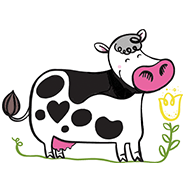 animal-cows