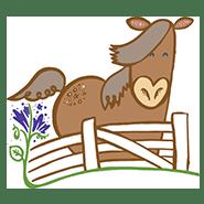 animal-horses