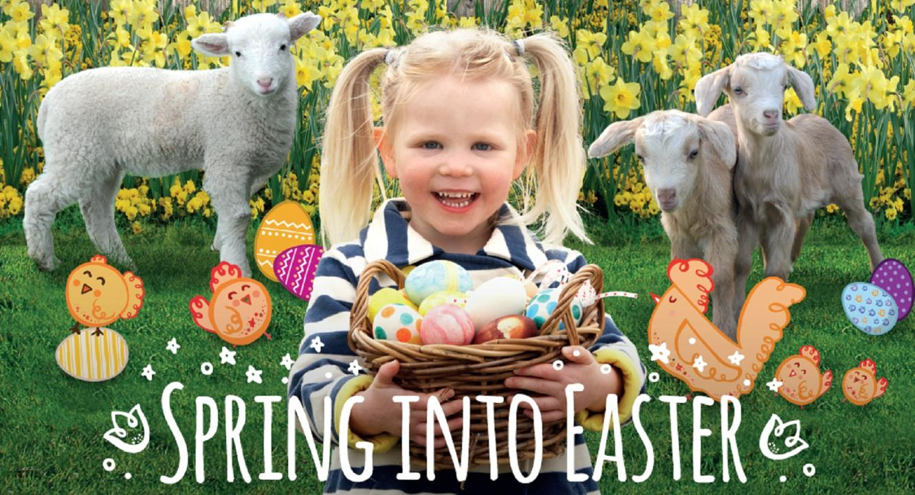 https://www.oddsfarm.co.uk/wp-content/uploads/2018/02/SpringintoEaster.jpg
