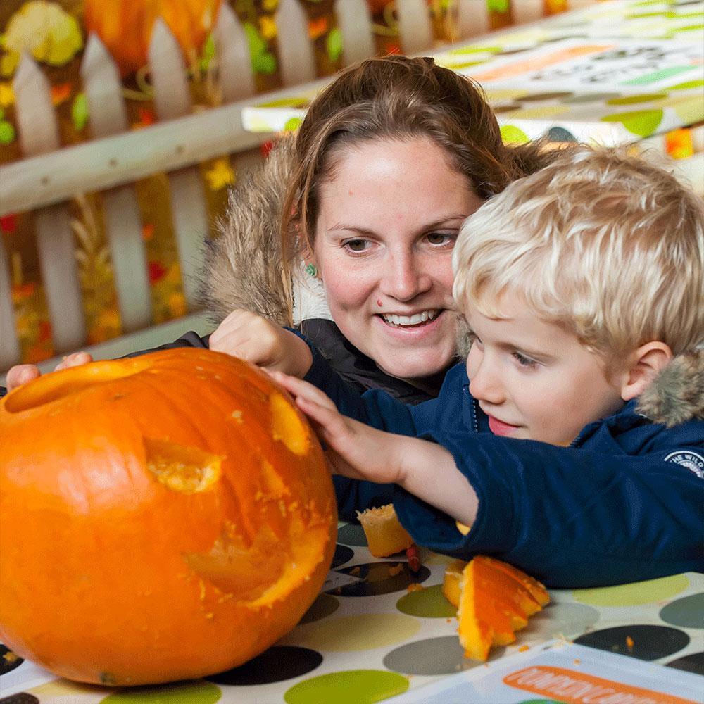 pumpkin carving corner at odds farm park